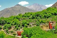morocco-high-atlas-ourika-valley